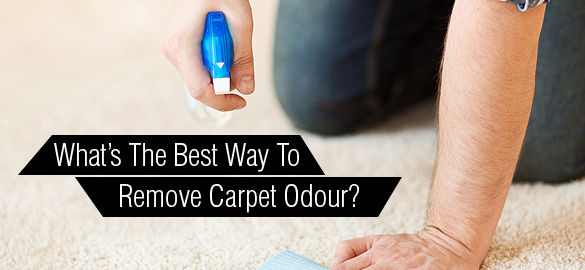 The Best Way To Remove Carpet Odour