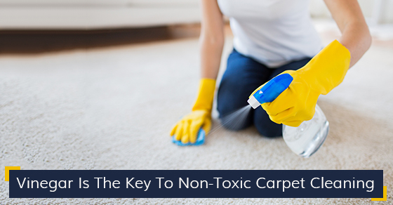 Vinegar Is The Key To Non-Toxic Carpet Cleaning