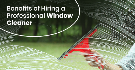 Benefits of Hiring a Professional Window Cleaner