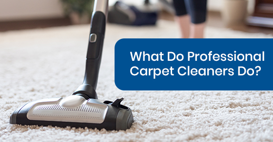 What Do Professional Carpet Cleaners Do?